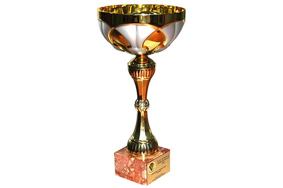 Cupa Locul 1 Top Național România 2008
