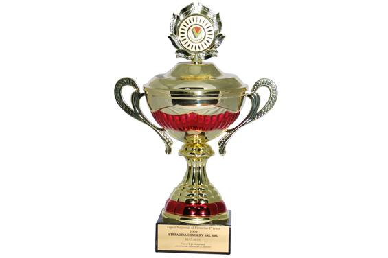 Cupa Locul 2 Top Naţional România 2009